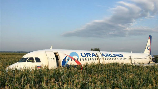 After Hitting Birds Russian Palne Makes Emergency Landing