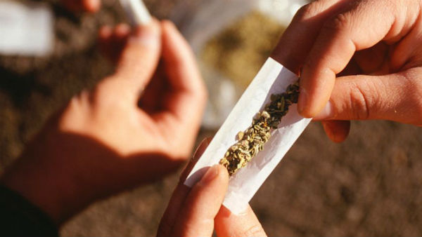 Delhi is 3rd highest consumer of cannabis after New york and Karachi