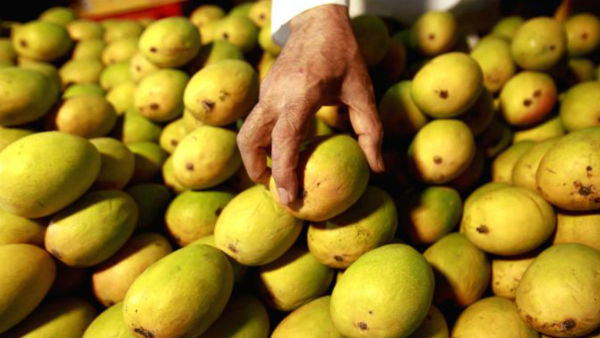 An Indian man faced a trial at the Court for stealing two mangoes from Airport traveller