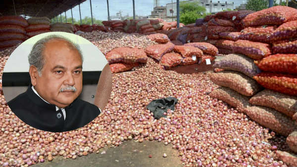 Onion prices to calm down in next few days: Narendra Singh Tomar
