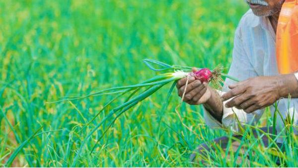 తహసీల్దార్ ఆఫీస్ సిబ్బందిపై పెట్రోల్ చల్లిన రైతు.. కరీం నగర్ లో కలకలం