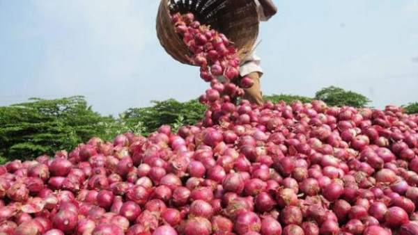 Onion theft in Tamil Nadu .. farmer complained to police