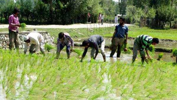 ap farmer leaders complaint to centre over telangana irrigation projects