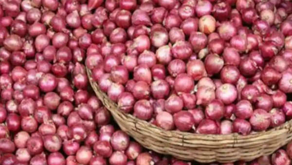 Government bans export of all varieties of onion with immediate effect