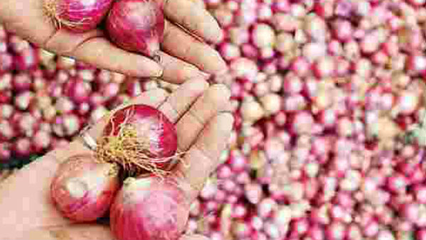 telangana govt decided to supply onions on subsidy basis says minister niranjan reddy