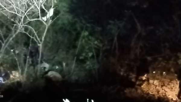 araku bus accident: ap governor, ts cm kcr, tdps chandrababu, lokesh reactions