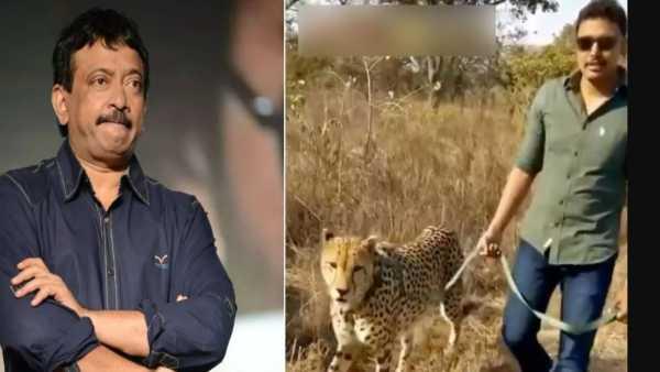 viral video:చిరుతతో నోముల భగత్ సరదా వాక్ -సాగర్ పోరులో టీఆర్ఎస్కే ఓటన్న ఆర్జీవీ -3నామినేషన్లు వెనక్కి