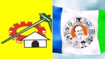 Which Party Won In Ap Local Body Polls