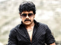 Nagarjuna Bhai Launched