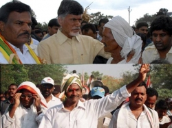 Chandrababu Ysr Yatras Not Same League