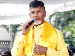 Ysrcp Mla Shocks Ap Cm Chandrababu
