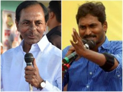 Jagan Following Kcrs Strategy