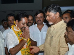 Ministry Was Confirmed Palamaneru Mla Amaranath Reddy
