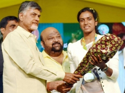 Pv Sindhu Accepts Andra Cm Naidu S Government Job Offer