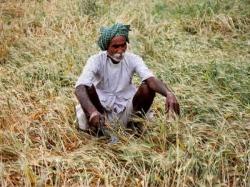 A Farmer Fell Into Well Died