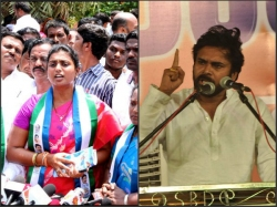 Chiranjeevi Is Better Than Pawan Kalyan Says Mla Roja