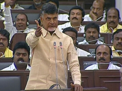 Cm Chandrababu Warns Ysrcp Members Ap Assembly