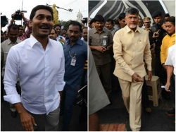 Chandrababu Is Not Digesting Facts Ysrcp