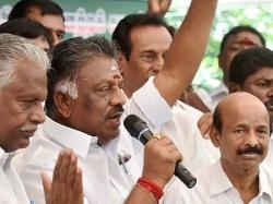 Mk Stalin Attacks Me As He Fears Dmk Will Lose Rk Nagar Poll Said Pannerselvam