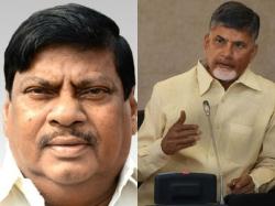 Chandrababu Naidu May Take Action Two Senior Leaders Includd