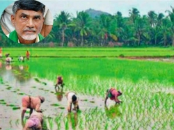 Ap Irrigated Land Will Be Privatisation The Name Corporate I