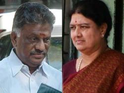 Who Is Behind Panneer Selvam S Strategy