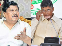 Chandrababu Naidu Warns His Party Leaders Allegations On Party