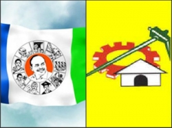 Telugudesam Party Wins Srikakulam Mptc Bypoll