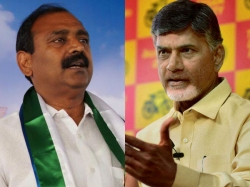Bhumana Controversial Comments On Chandrababu