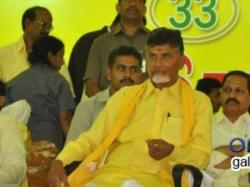 Chandrababu Naidu Elected As Tdp National President Second Time