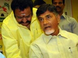 Is Harikrishna Targets Ap Cm Chandrababu