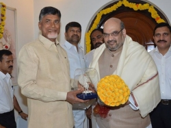 Chandrababu Naidu Amit Shah Discuss Alliance Status