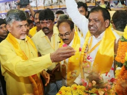 Chandrababu Planning Strengthen Party Andhrapradesh