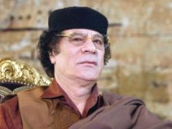 Gaddafi S Son Saif Freed Libya