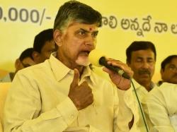 Why Ysrcp Contests Nandyal Poll Chandrababu