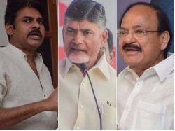 Venkaiah Naidu The Most Suitable Post Says Chandrababu