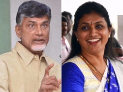 Roja Takes On Chandrababu Over Liquor Issue