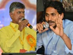 Media Involvement Nandyala Bypoll