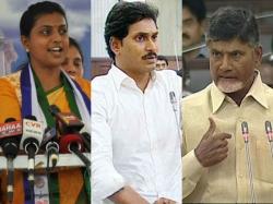 Ap Cm Chandrababu Naidu Campaign Nandyal Election
