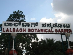 Suspicious Object Creates Scare Near Lalbagh West Gate Jaya