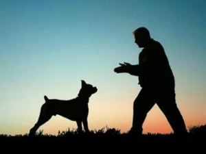 Chand Became Hero After Fights With Dogs