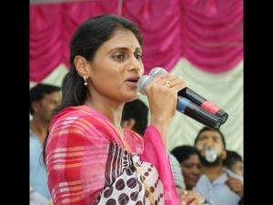 Telangana Ycp Demands Sharmila S Leadershp
