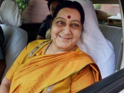 అగ్నిపర్వతాన్ని అడుగుతా: నెటిజన్కు సుష్మా సూపర్ జవాబు